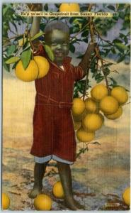Vintage Florida Postcard Black Boy / Grapefruit Tree Tichnor Linen 1952 Cancel