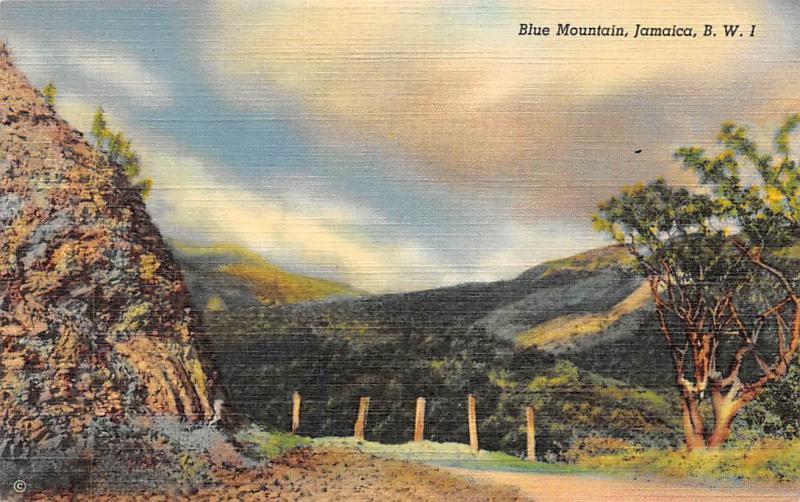 B.W.I. Jamaica Blue Mountain Typical Mountain Scenery