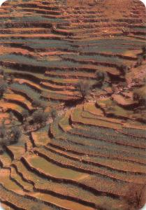 Yemen View of Agricultural Terraces at the Yemen