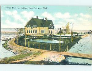 Unused Divided-Back FISH HATCHERY Sault Ste. Marie Michigan MI c6903