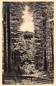 Eisenach Die Wartburg von der Hohen Sonne Forest