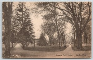 Oberlin Ohio~Oberlin College~Campus View South~Fork in the Paths~c1910 Albertype