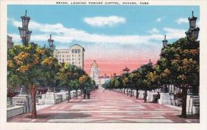 Cuba Havana Prado Looking Toward Capitol