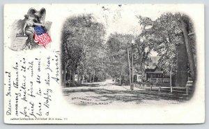 Taunton Massachusetts~Broadway Street Homes~Arthur Livingston Lady Liberty~1905