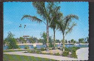 Recreation Area Sun City AZ Postcard BIN