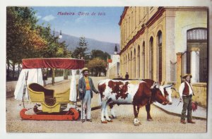 P1216 old unused postcard madeira carro de bois 2 bulls and cart