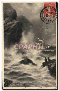 Old Postcard Birds Gulls