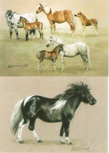 Complete set of four (4) horse PC issued by Finland Post, including presentation