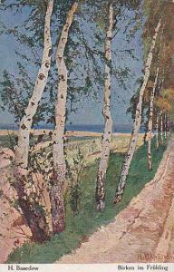 AS: H BASEDOW , Trees , Birken im Fruhling , 00-10s
