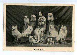 243297 TANYE Famous CIRCUS animal trainer SPITZ Dogs Vintage