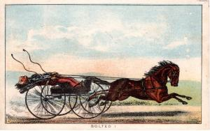 VICTORIAN TRADE CARD,  BOLTED!