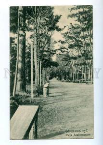 155271 BELARUS MOGILEV Garden Dembovetskago Vintage postcard