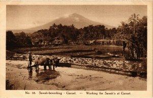 CPA INDONESIA Sawah-bewerking, Garoet (341351)