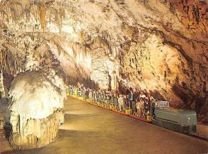 Slovenia Postojnska Jama le Grotte di Postojna Cave
