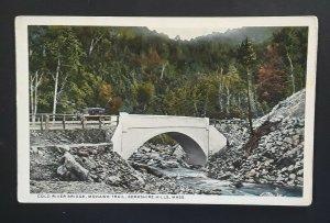Mint Vintage 1920s Berkshire Hills MA Cold River Bridge Mohawk Trail Postcard