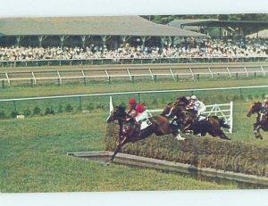Chrome HORSE RACING SCENE Saratoga Springs New York NY AG5499