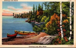 Maine Greetings From Milo Curteich