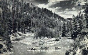 Fording Middle Fork of Salmon River - Idaho ID