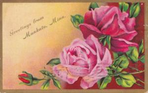 Greetings From Mankato Minnesota With Beautiful Roses 1910