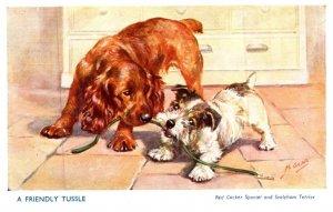 Dog ,  Red Cocker Spaniel , Sealyham Terrierr