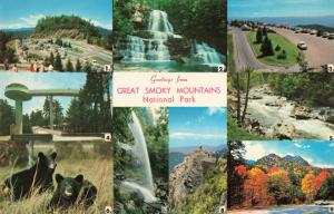 Postcard Great Smoky Mountains National Park