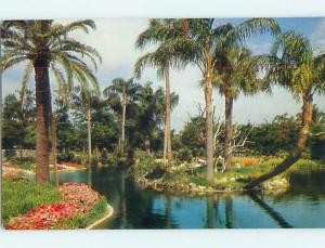 Pre-1980 TREES AND WATER AT BUSCH GARDENS Tampa Florida FL Q7623