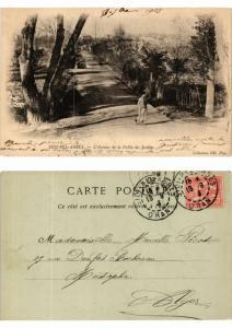 CPA Algerie - Sidi-Bel-Abbes - L'Avenue de la Vallée des Jardins (774024)