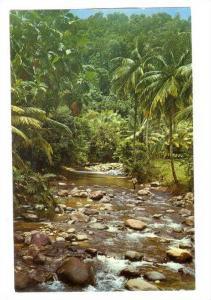 Martinique; Riviere-Blanche, 40-60s