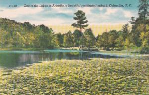 South Carolina Columbia One Of The Lakes In Arcadia Residential Suburb