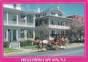 New Jersey Greetings Hello From Cape May Victorian Architecture & Horse D...