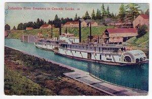 Columbia River Steamers in Cascade Locks
