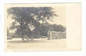 RP, Chairs Under Trees, Falmouth, Massachusetts, 1913