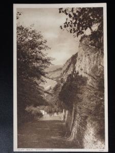 Isle of Wight: Cliff Walk, Sandown c1928 by W.J.Nigh