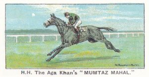 Mumtaz Mahal Winners On The Turf 1923 Queen Mary Stakes Horse Racing Cigarett...