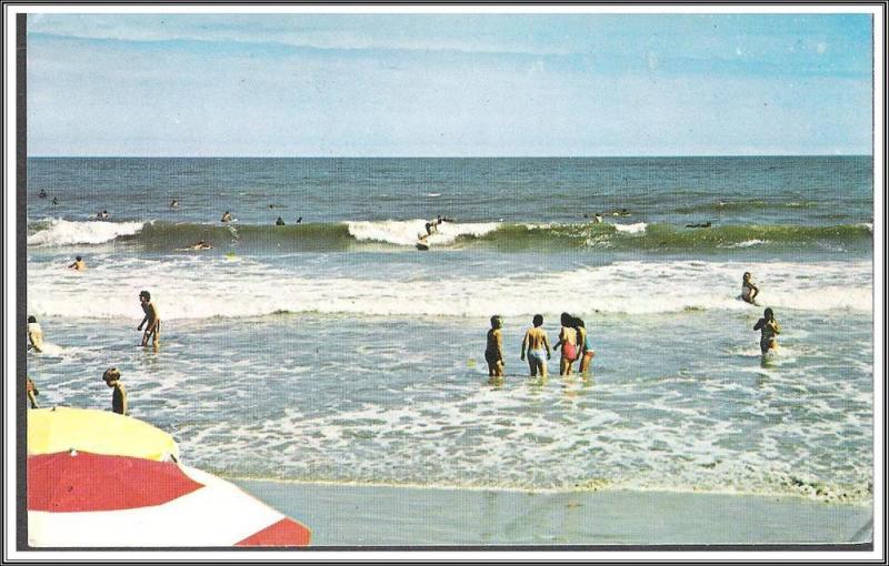 Ocean Scene Postcard