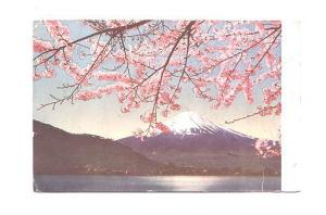 Scenic of Blossoms  Mountain Fuji, Japan, Interesting Message on Back