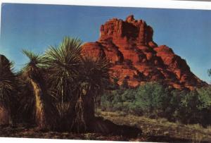 Postcard Passion