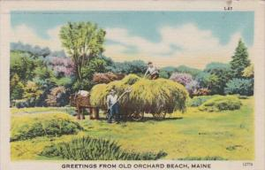 Maine Greetings From Old Orchard Beach