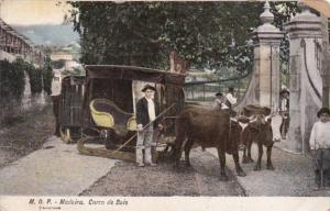 Portugal Madeira Carro de Bois Ox Cart