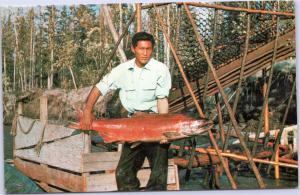 postcard Fish-wheel fishing at Fort Yukon, Alaska - man holding large fish