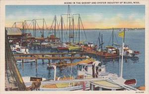 Scene In The Shrimp and Oyster Industry Of Biloxi Mississippi Curteich