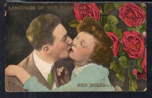 Language of the Flowers Red Roses Romance BIN