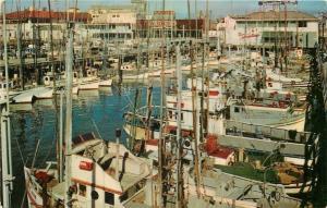 San Francisco~Fishing Fleet~Fisherman's Wharf~Tarentino's~1960 Postcard