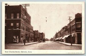 Oelwein Iowa~Hotrse & Tall Wagon on E Charles St~Millinery~Hanging Light~c1914