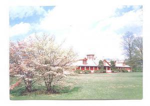 Spring Blossoms Kentucky Horse Farm,