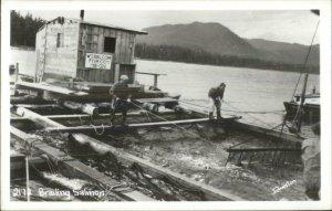Alaska Fishing Industry Brailing Salmon - Johnston Real Photo Postcard
