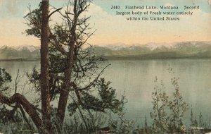 Postcard Flathead Lake, Montana  Second Largest Body of Fresh Water ME8.