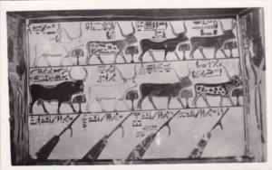 Egypt Thebes Tomb Of Queen Nefert-Art Photo