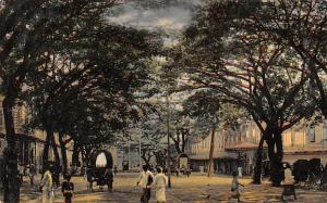 Colombo Ceylon, Ceylan York Street Looking towards the Harbour Colombo York S...