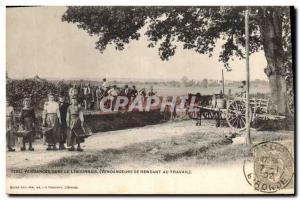 Old Postcard Folklore Wine Vineyard Harvest in the Libourne Vendangeurs going...